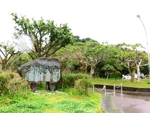 会場の琉球大学は雨模様
